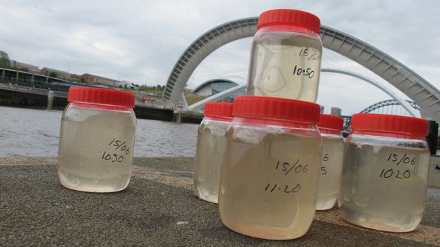 Flow - water samples from river tyne
